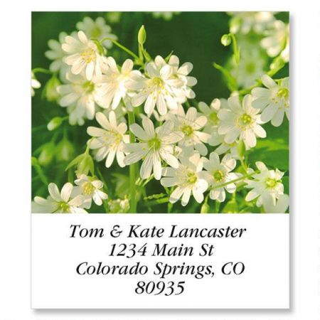 Wildflowers Select Return Address Labels  (8 Designs)