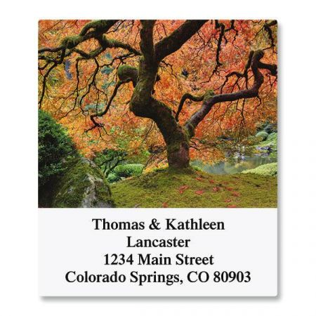 Into the Trees Select Return Address Labels  (6 Designs)