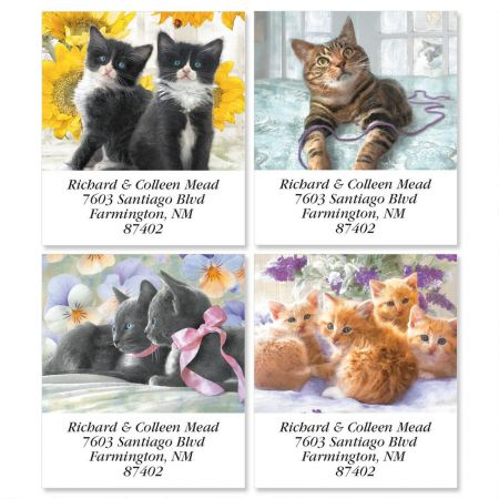 Purrfectly Feline  Select Return Address Labels  (4 Designs)