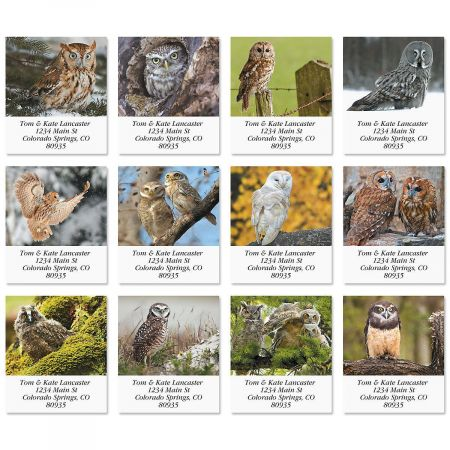 Whoo Me? Select Address Labels  (12 Designs)