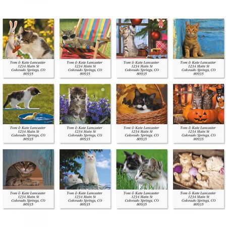 Love of Cats Select Return Address Labels  (12 Designs)