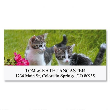 Love of Cats Deluxe Address Labels   (12 Designs)