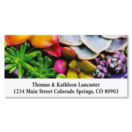 Succulent Garden Deluxe Return Address Labels (12 Designs)