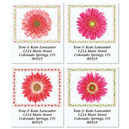Sprout & Bloom Select Return Address Labels (4 Designs)