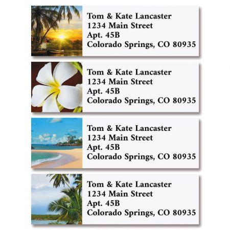 Tropical Classic Return Address Labels (4 Designs)