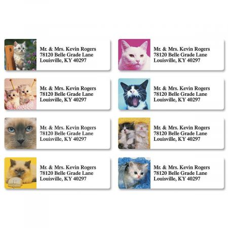 Picture Purrfect Classic Return Address Labels  (8 Designs)