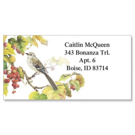 Songbirds  Border Return Address Labels  (6 Designs)
