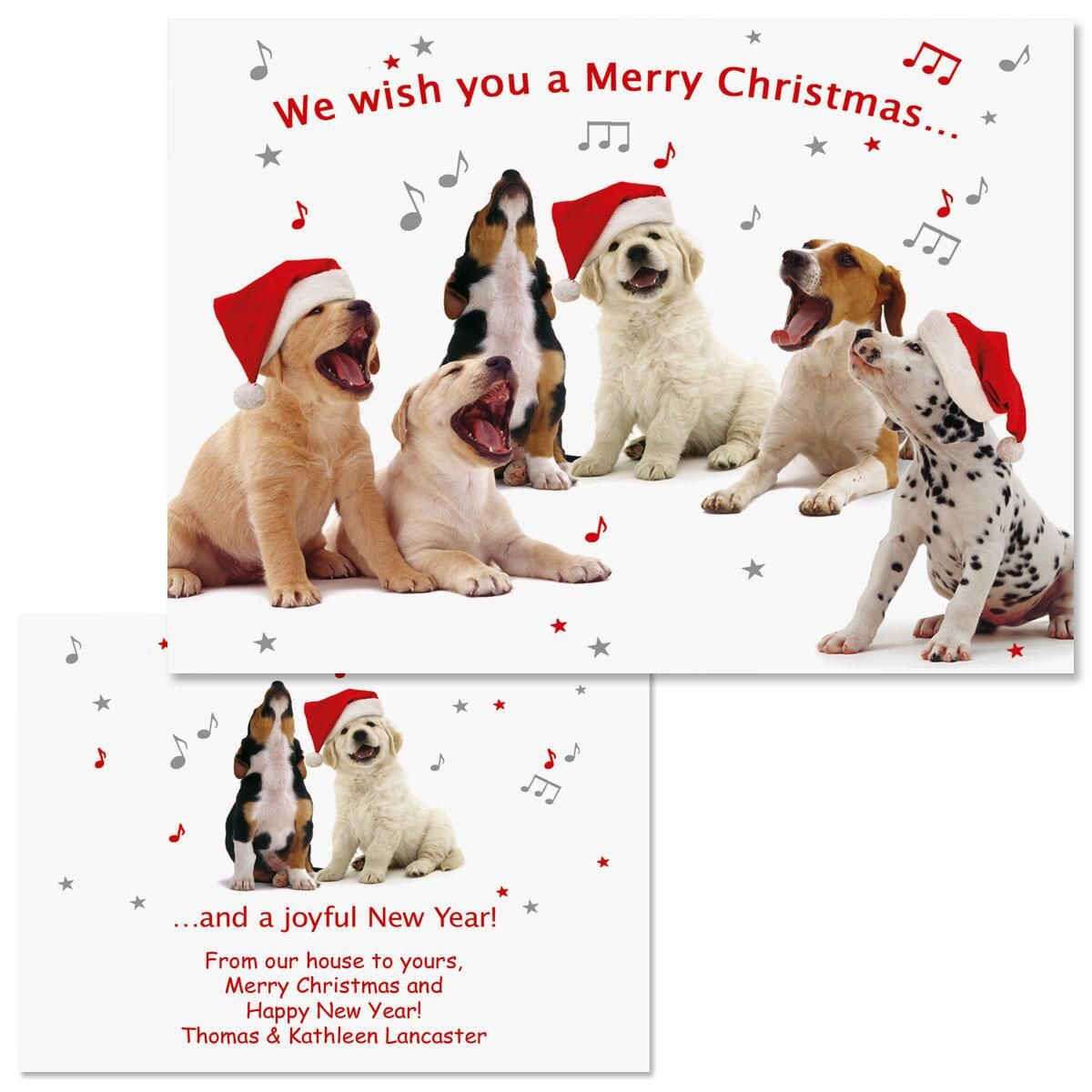 Dogs Singing Note Card Size Christmas Cards | Colorful Images