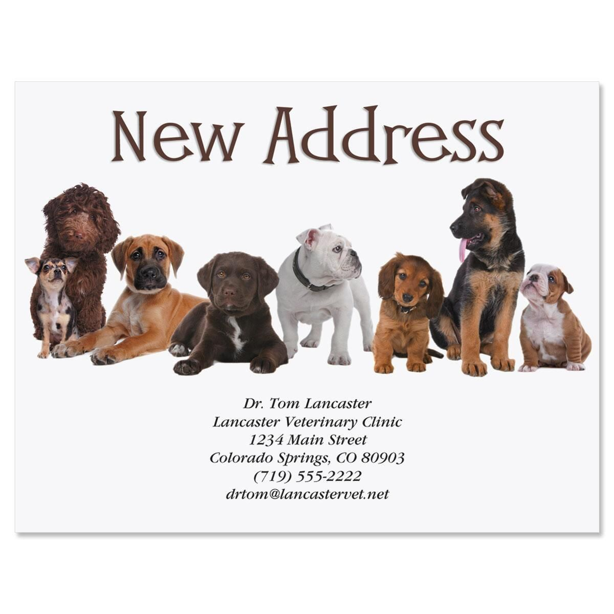 Bow Wow New Address Postcards