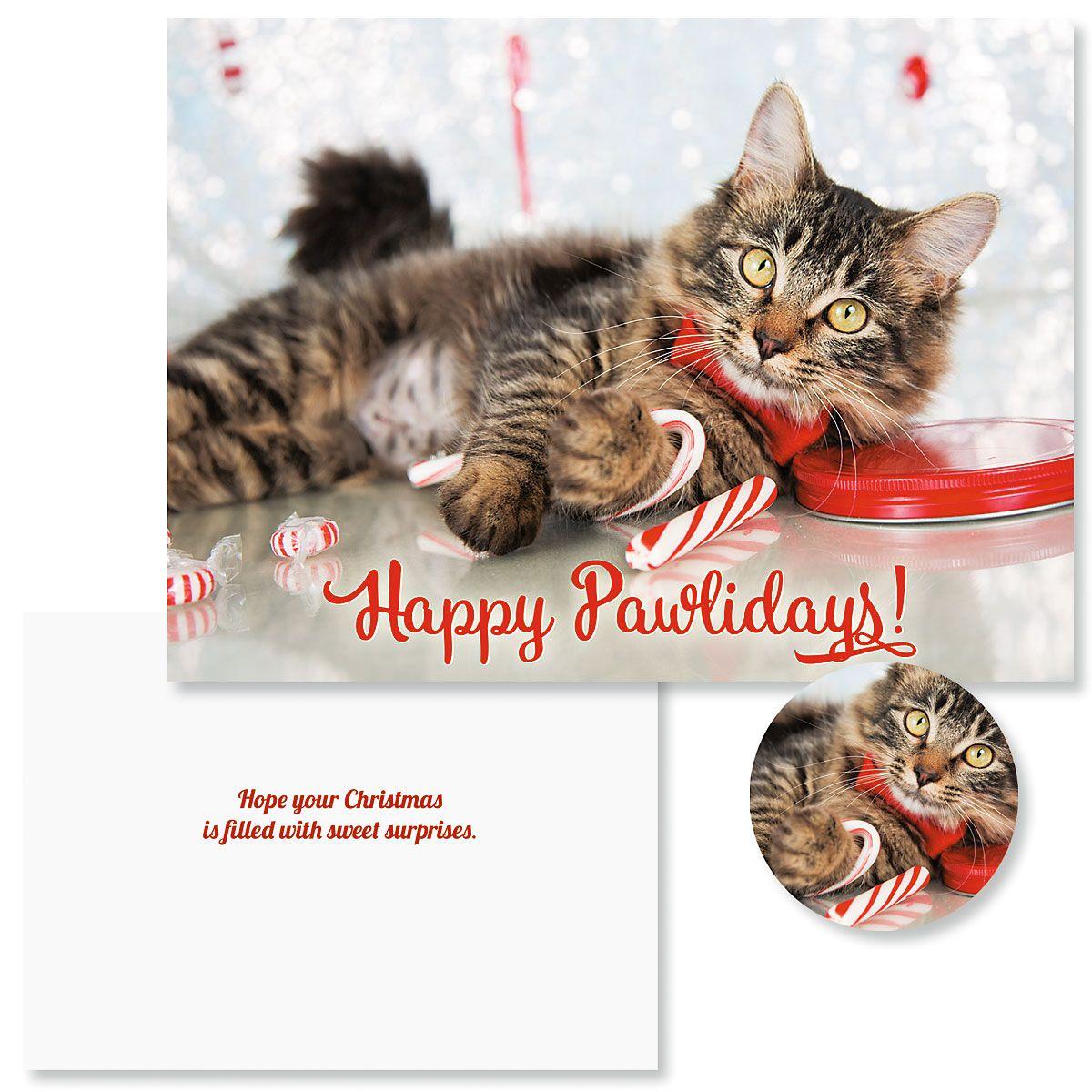 Happy Pawlidays Christmas Cards