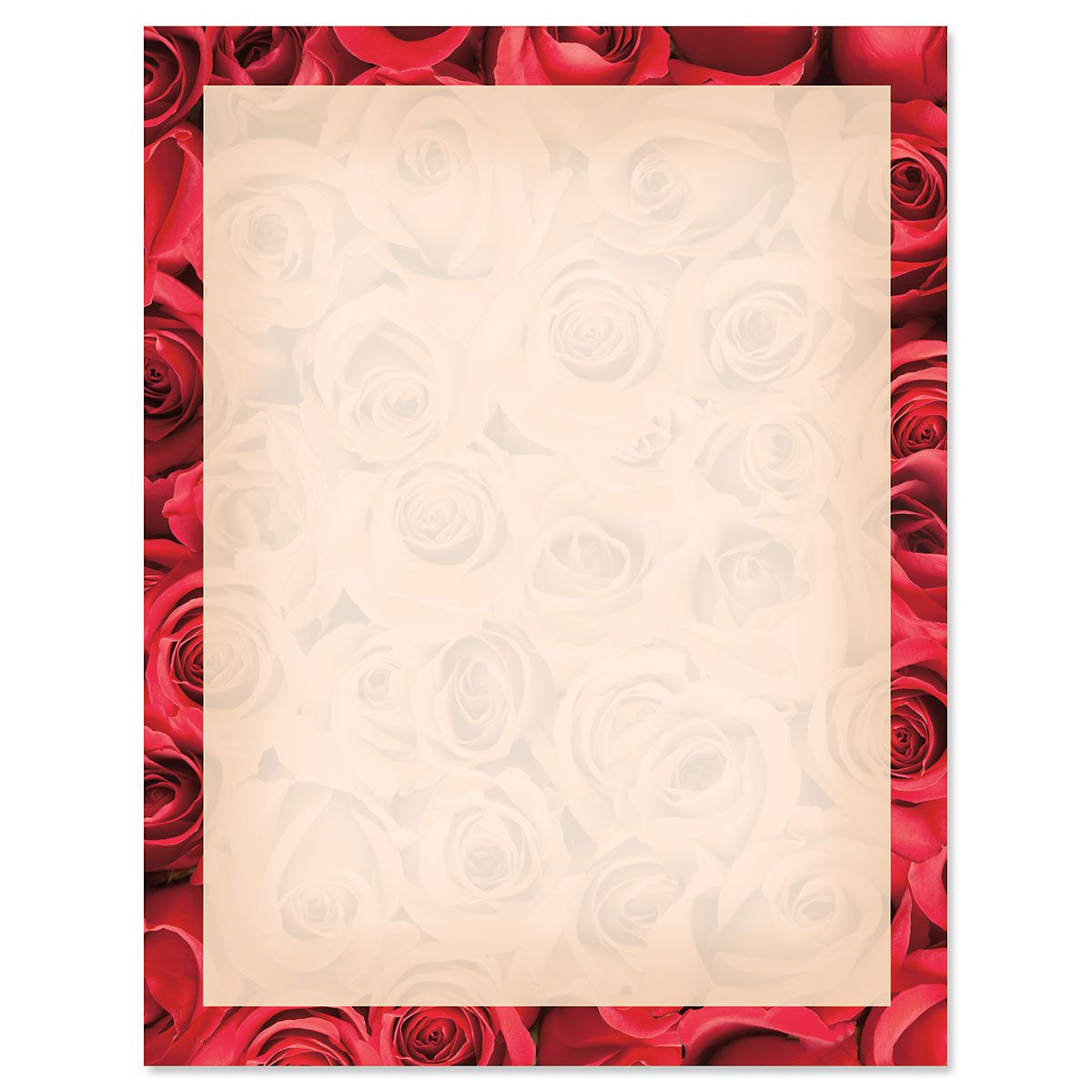 Bed of Roses on Cream Letter Papers