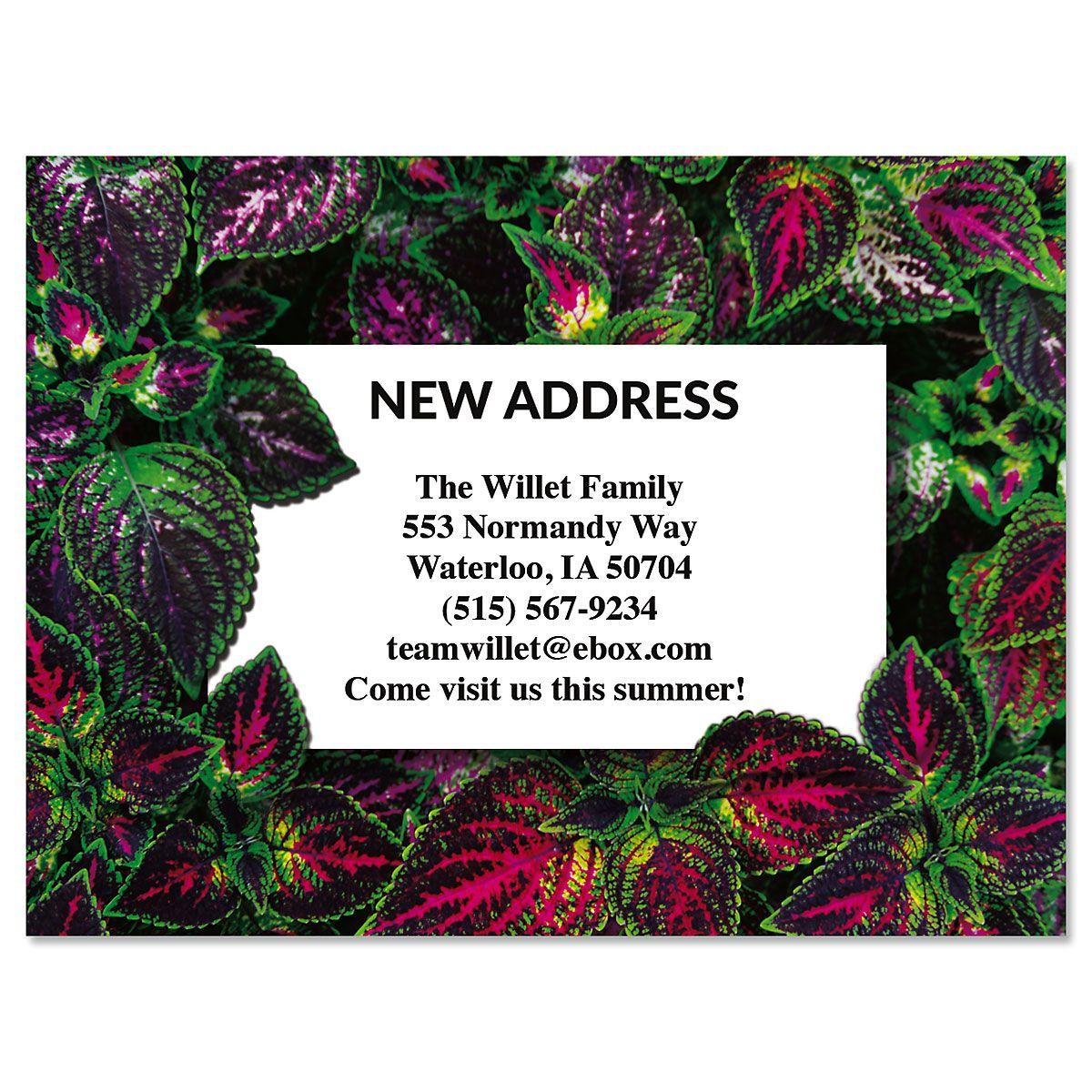 Newly Planted New Address Postcards