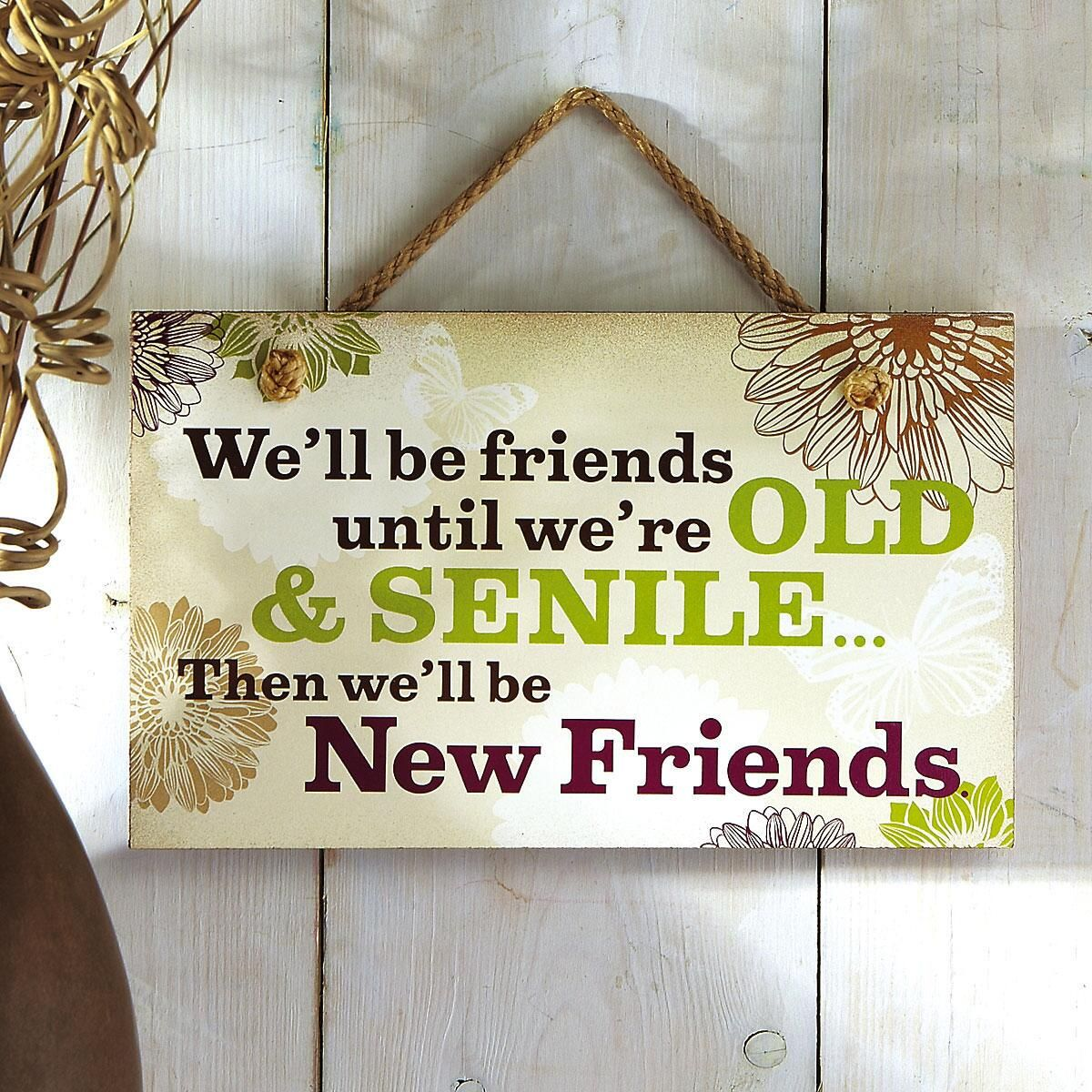 We'll Be Friends Wooden Wall Plaque