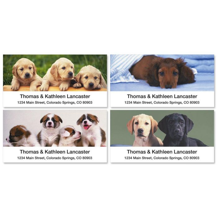 Puppy Love Deluxe Return Address Labels  (4 Designs)
