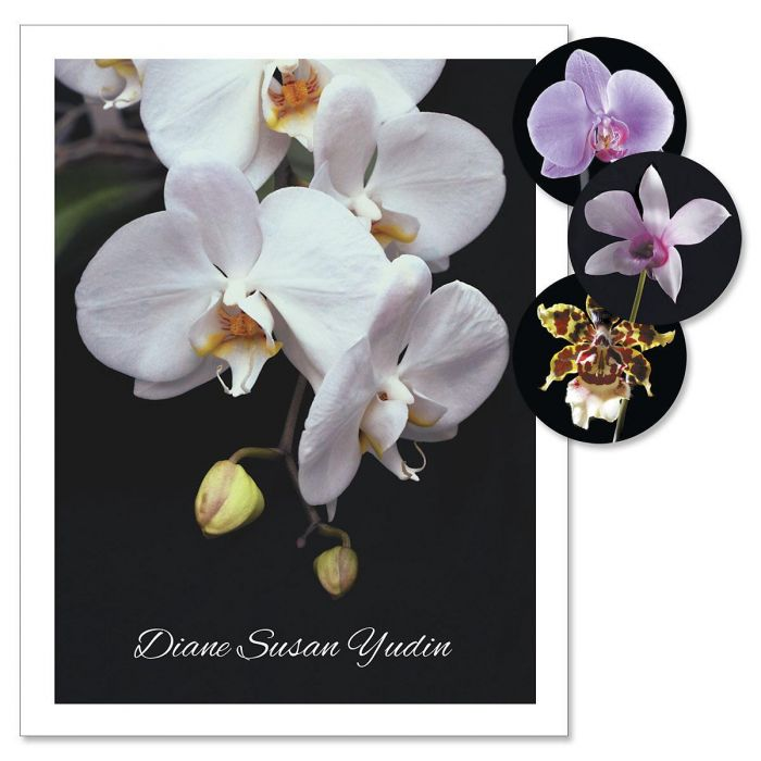 Orchids on Black Custom Note Cards