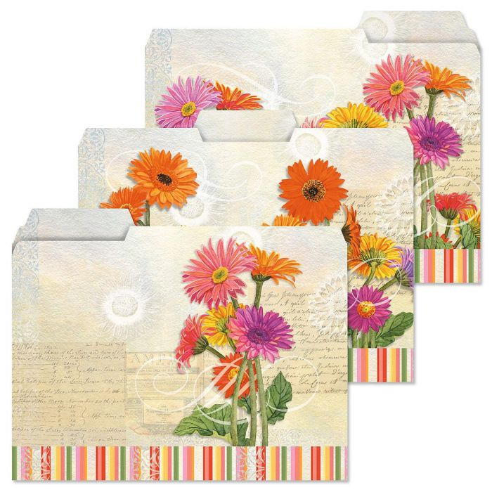 Gerbera File Folders