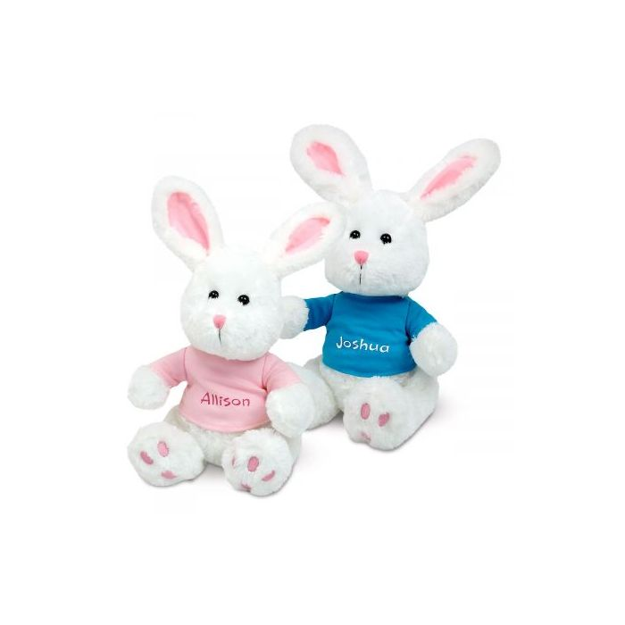 Plush Bunny with Personalized T-Shirt