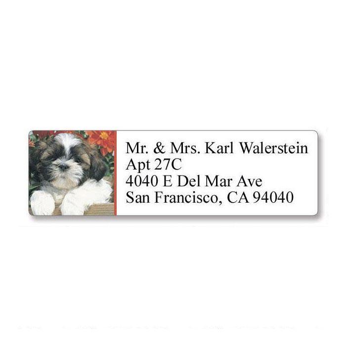Shih Tzu Classic Return Address Labels