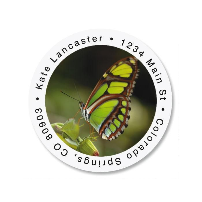 Malachite Butterfly Round Return Address Labels