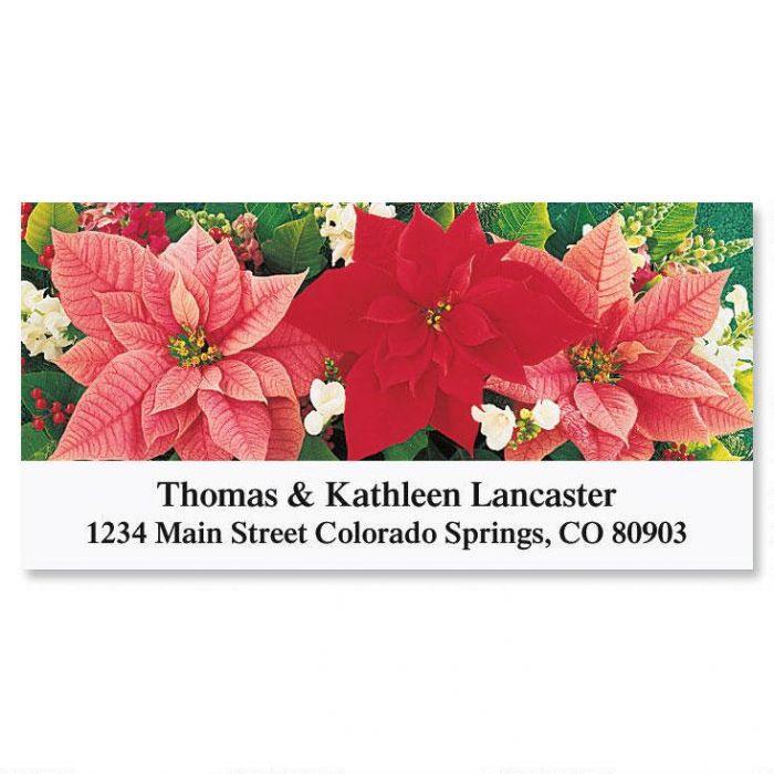 Poinsettia Trio   Deluxe Return Address Labels