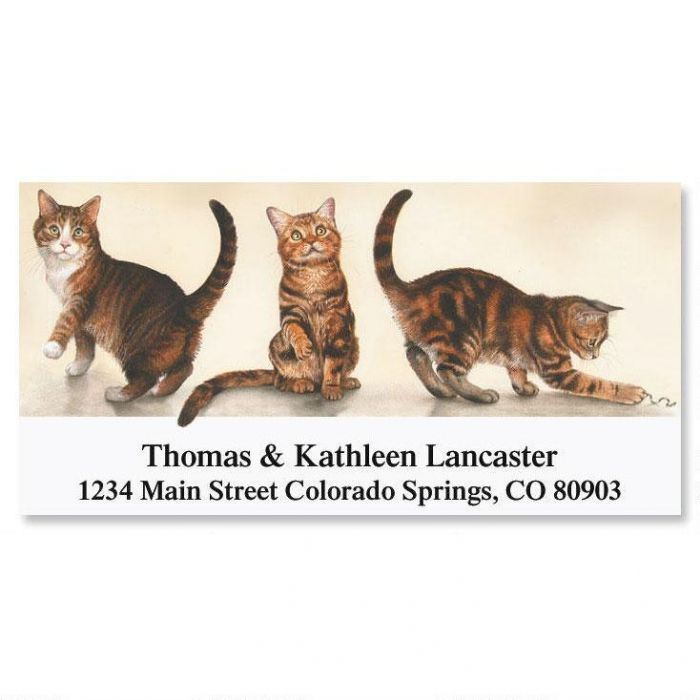 Poised for Play Deluxe Return Address Labels