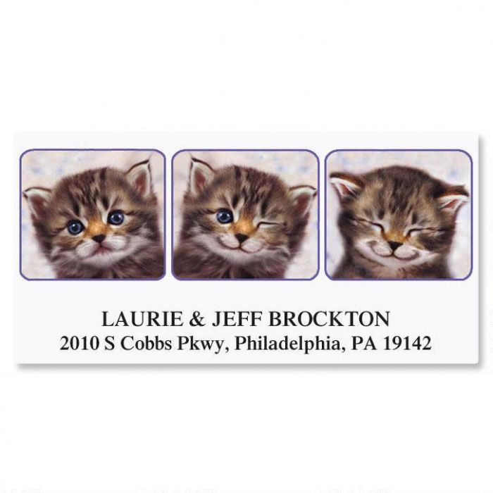 Candid Kitty Deluxe Return Address Labels