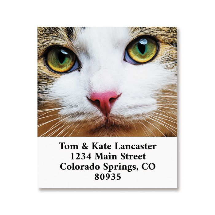 Cat Face Select Return Address Labels