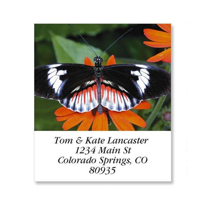Longwing Butterfly Select Return Address Labels