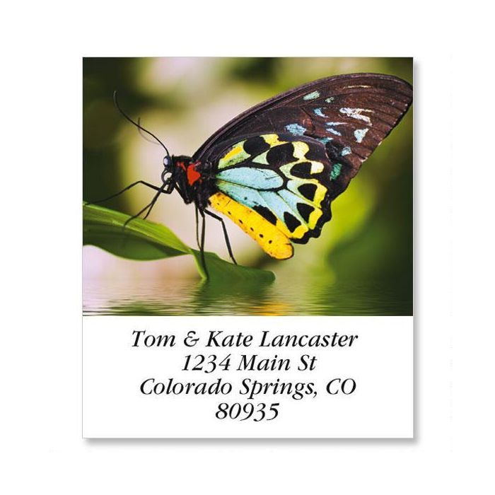 Yellow Body Butterfly Select Return Address Labels