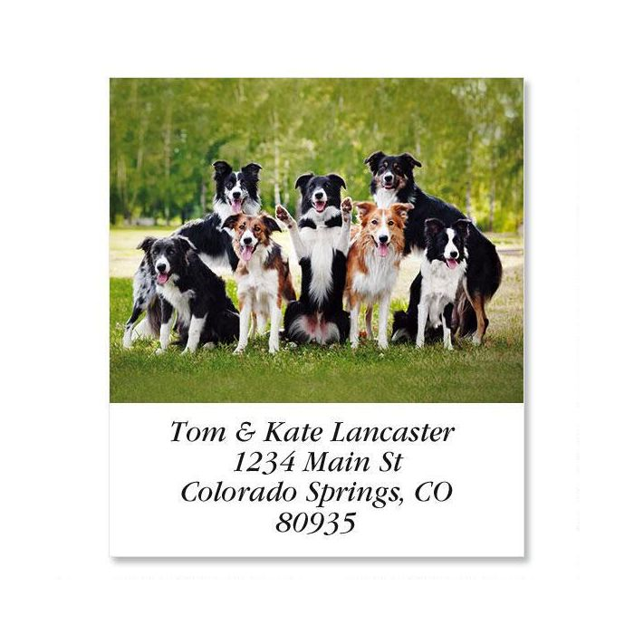 Happy Dogs Select Return Address Labels