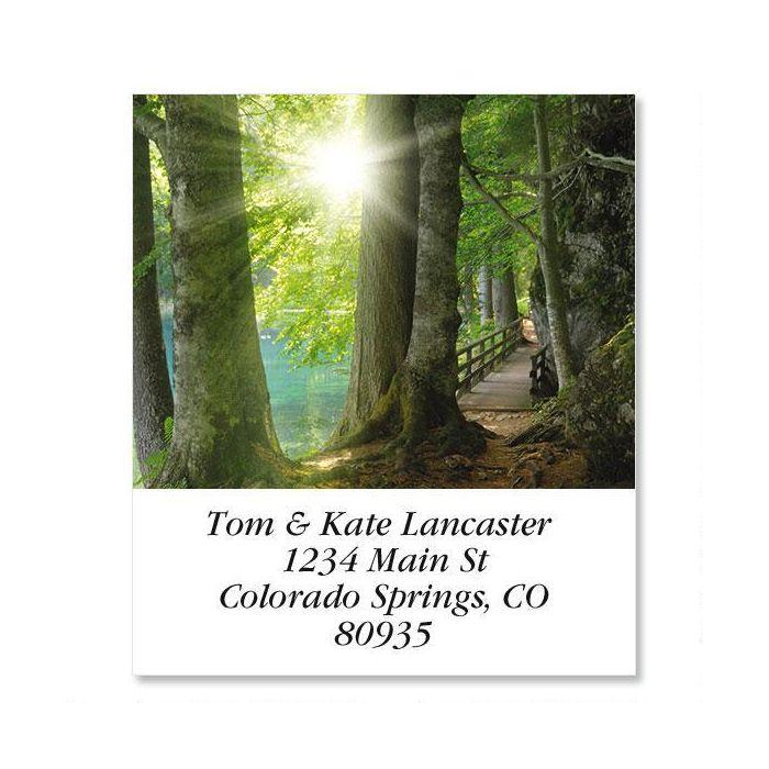 Sun Through Trees  Select Return Address Labels