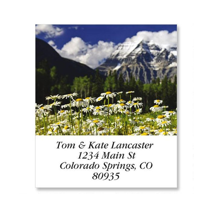 Mount Robson Daisies Select Return Address Labels