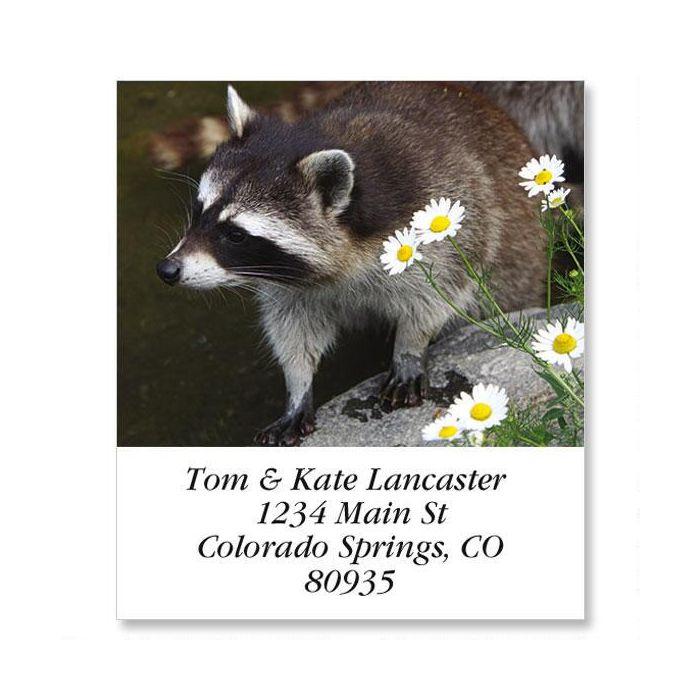 Raccoon Select Return Address Labels