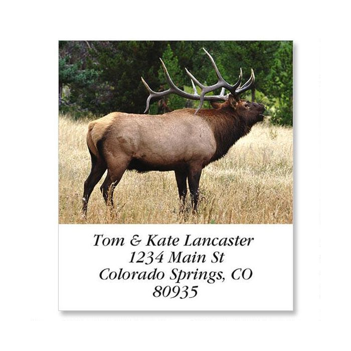 Bugling Elk Select Return Address Labels