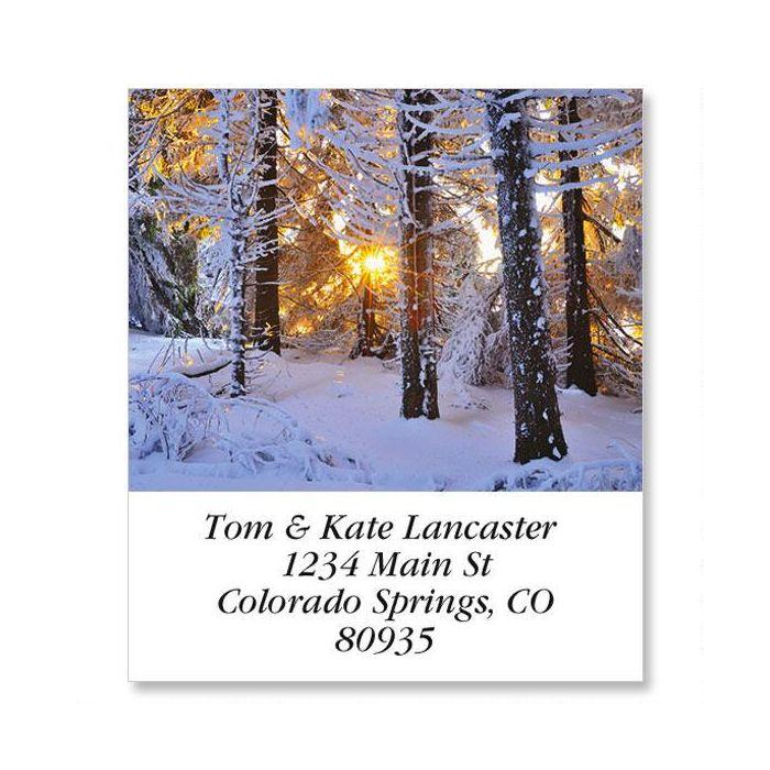 Snow Covered Conifer Select Return Address Labels