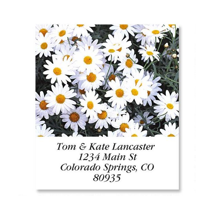 Daisies Select Return Address Labels