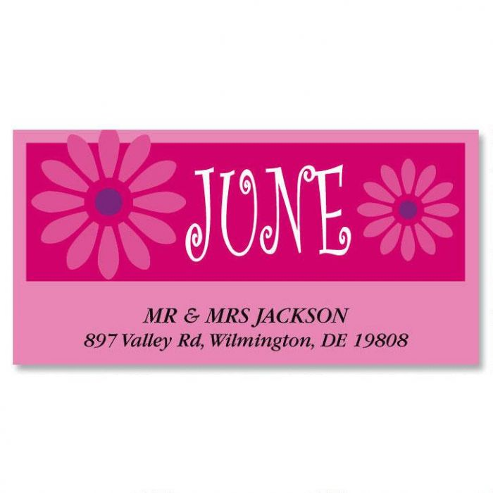 a fun year deluxe return address labels colorful images