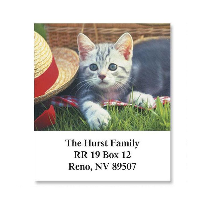 Kitty Kapers Select Return Address Labels  (6 Designs)