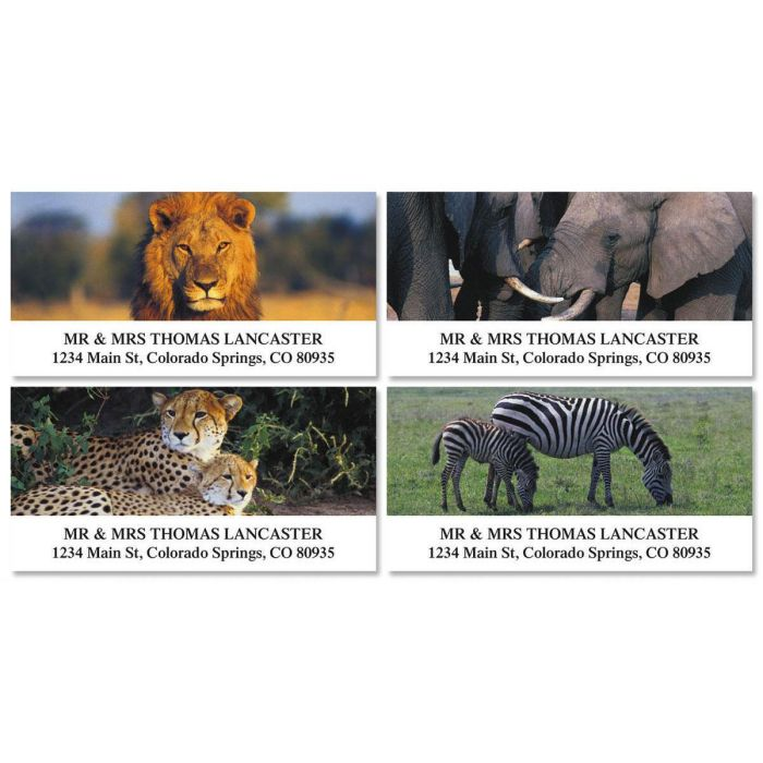 Wildlife of Africa Deluxe Return Address Labels  (4 Designs)