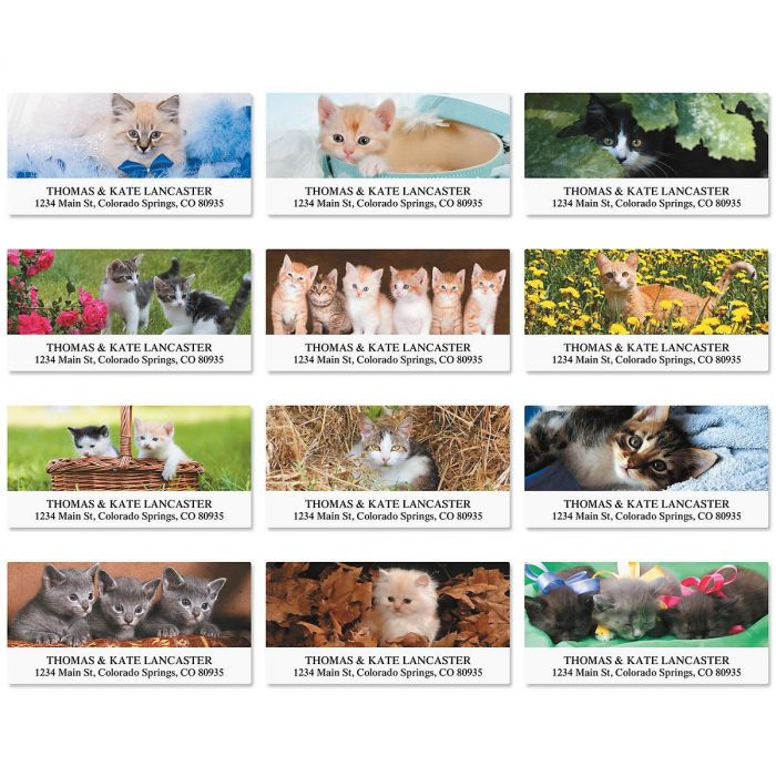 Everyday Cats Deluxe Return Address Labels  (12 Designs)