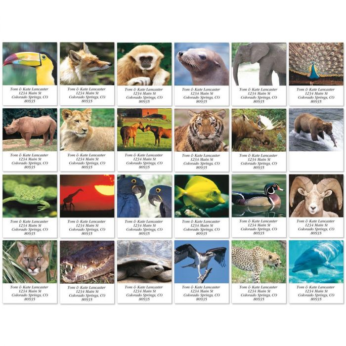 Animal Lives Select Return Address Labels  (24 Designs)