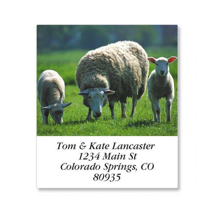 Barnyard Animals Select Return Address Labels  (24 Designs)
