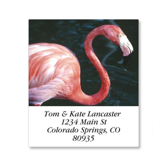 North American Wildlife Select Return Address Labels  (24 Designs)