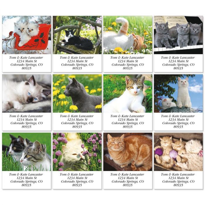 Love Those Cats Select Return Address Labels  (12 Designs)