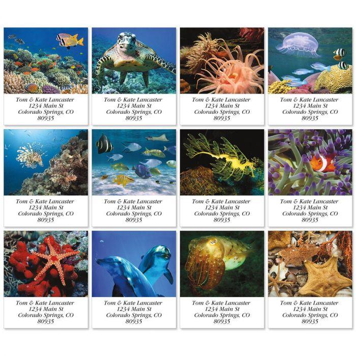Jewels Of The Sea Select Return Address Labels  (12 Designs)