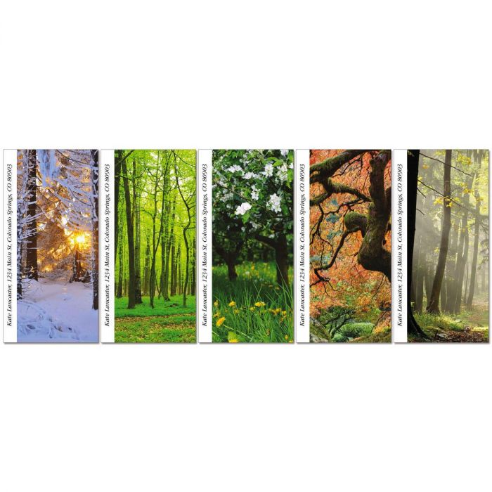 Into The Trees Oversized Return Address Labels  (5 Designs)