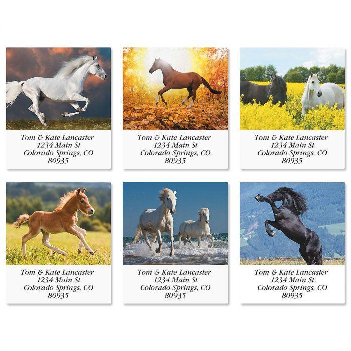 Love Horses Select Return Address Labels  (6 Designs)