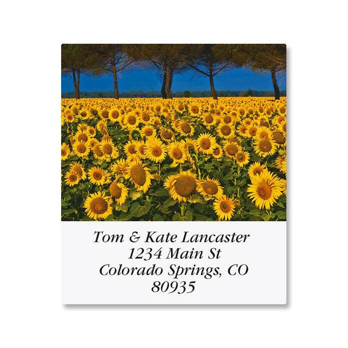Sunny Sunflowers Select Return Address Labels  (6 Designs)