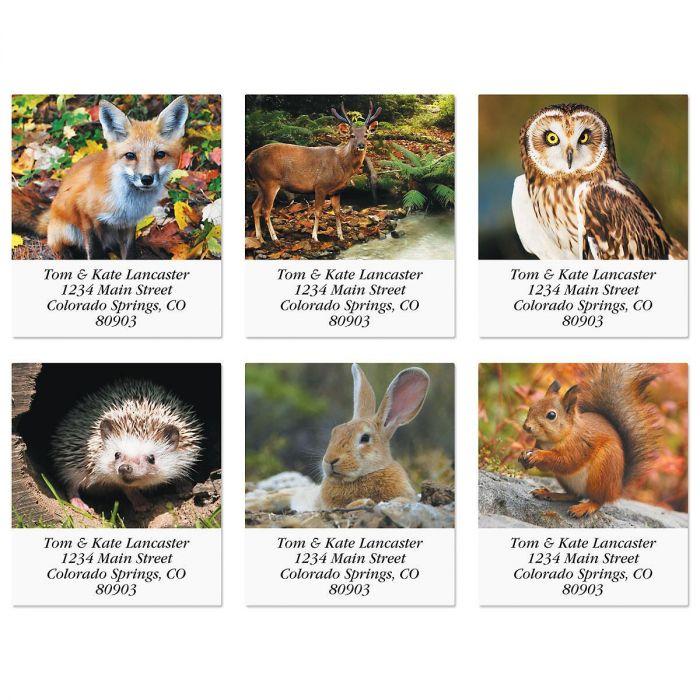 Woodland Animals Select Return Address Labels  (6 Designs)