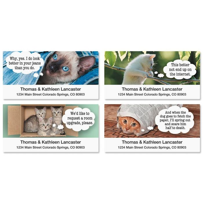 Cattitudes Deluxe Return Address Labels  (4 Designs)